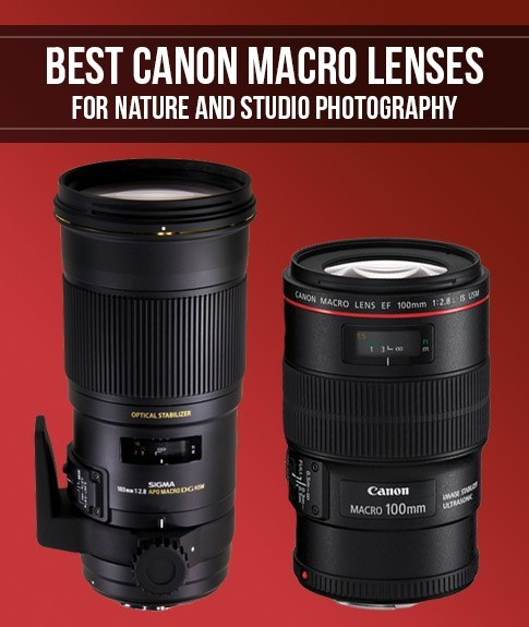 Best canon macro lenses for nature and studio photography - Best lens for interior design photography ...