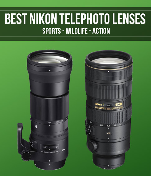 Best Nikon Telephoto Zoom Lenses Smashing Camera