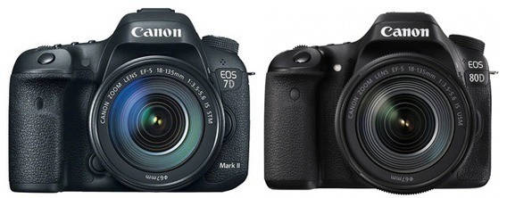 Canon 7D Mark II vs Canon 80D – Which One Is Better? | Smashing Camera